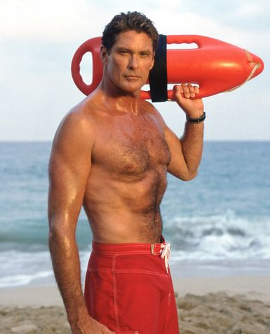 David Hasselhoff as Mitch
