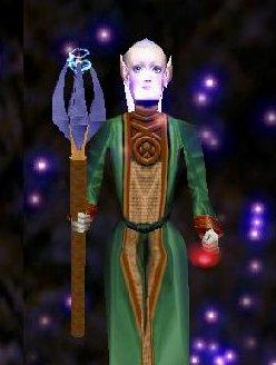 High Elf Wizard