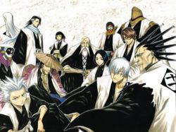 Gotei 13 Captains