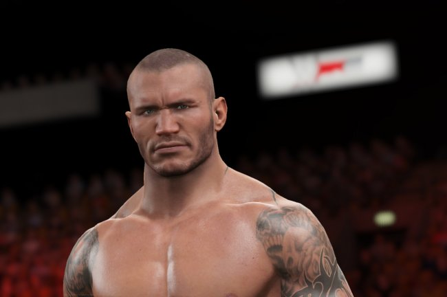 WWE 2K15 finally gives this series the significant graphical overhaul it's needed for ages.