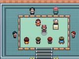 Pokemon Contests