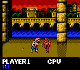 The two player fighting mode in NES version