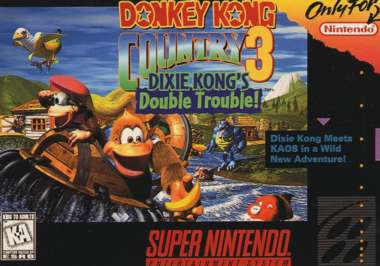 The last DKC game for the SNES