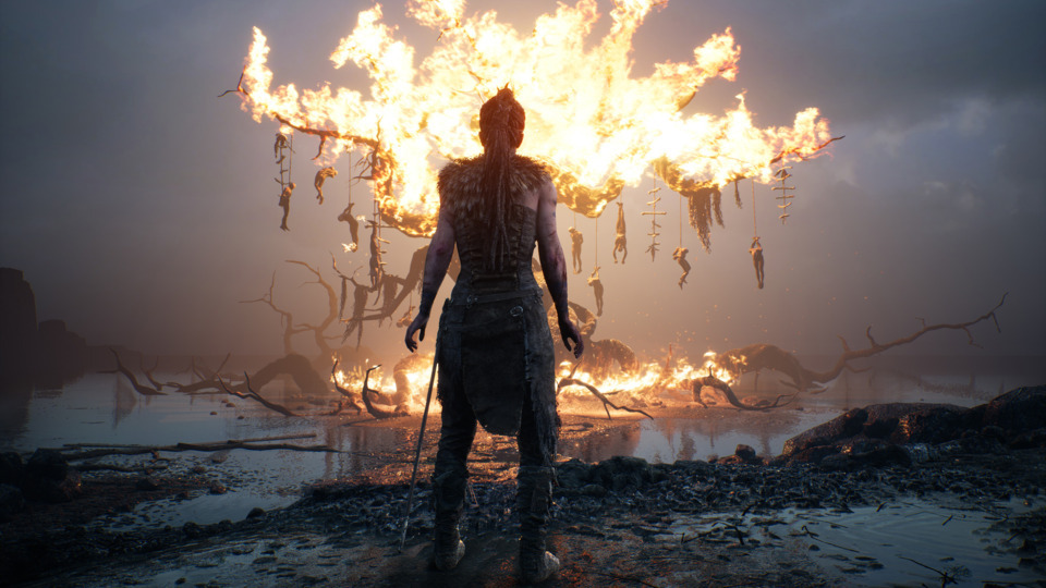 Hellblade was a solid performer this year on everyone's GOTY lists.