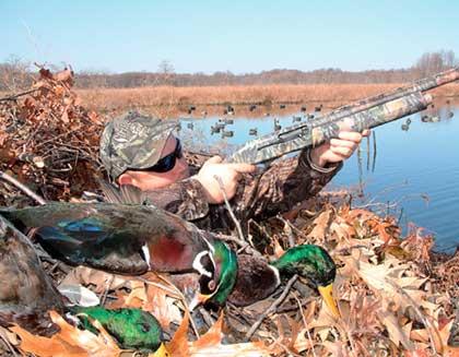 A duck hunter firing from his blind