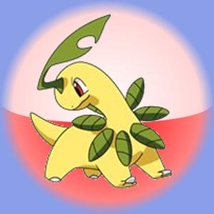 Chikorita evolves into this pokemon, Bayleef