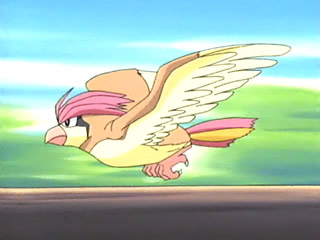 Pidgeotto on the Anime. Ash owned one on the original series.