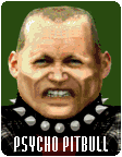 Psycho Pitbull