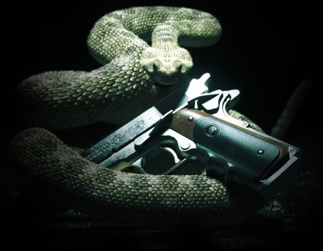 I ain't 'fraid of no snakes. Wait, yes I am.