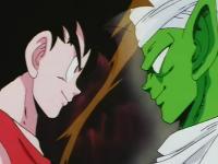 Goku and Piccolo Jr.