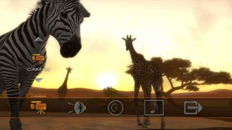 Put on the Afrika viewer, and enjoy the ambiance of nature.