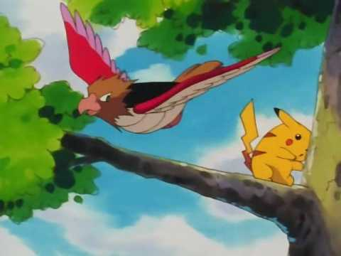 Spearow attacking Pikachu on the Anime