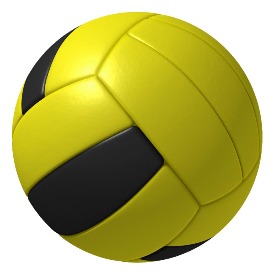 The Mario Sports Mix Dodgeball.