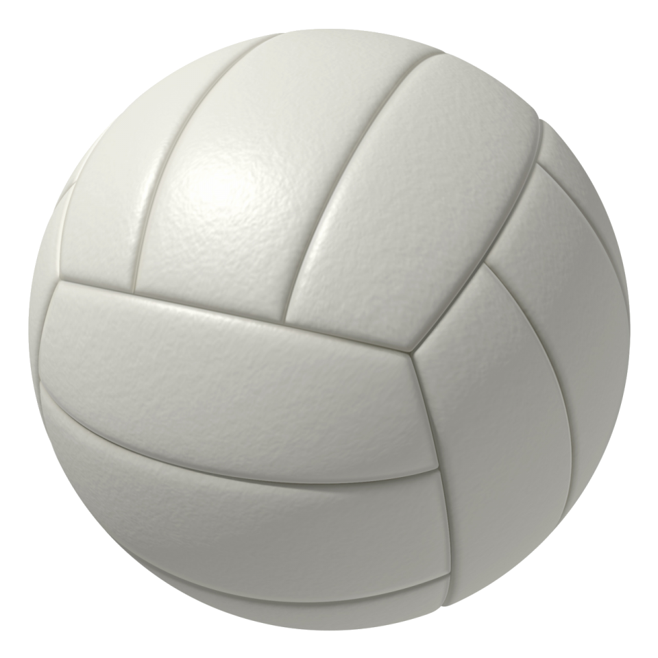 A volleyball as seen in the game.