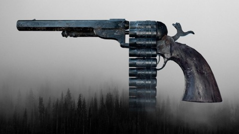 I think the weapons and the way the developers play around with them are pretty cool. Take this 17 round revolver for example.