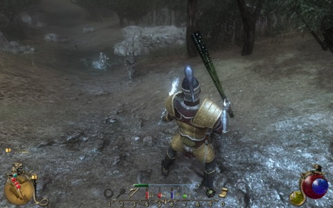 Combat in Two Worlds II.
