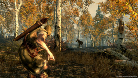 An example of the engine at work in The Elder Scrolls V:Skyrim