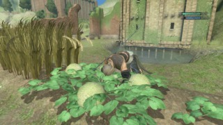 And to think I couldn't find the time of day to cover Nier's riveting farming portions!