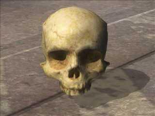 A Halo 3 Skull