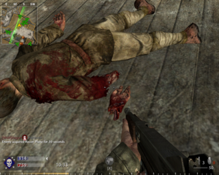 World At War has a higher level of gore than other Call of Duty games
