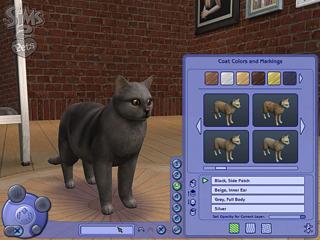 Customizing the coat of a new feline friend