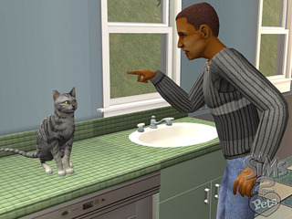 Unlike real life, SimCats can be taught to stay off the kitchen counter. Eventually.