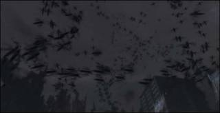 Swarm of Kryll