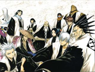 The Bleach Captains