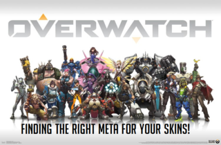 Learn all about the state of skins in Overwatch!