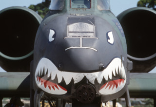 Shark Warthog.
