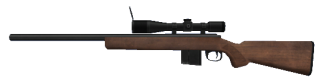 Not your usual Hunting Rifle