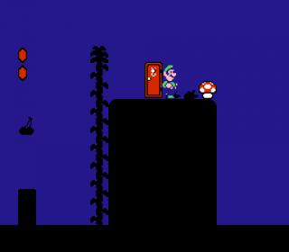 Luigi entering Sub-Space in Level 1-1, finding a secret Mushroom item.