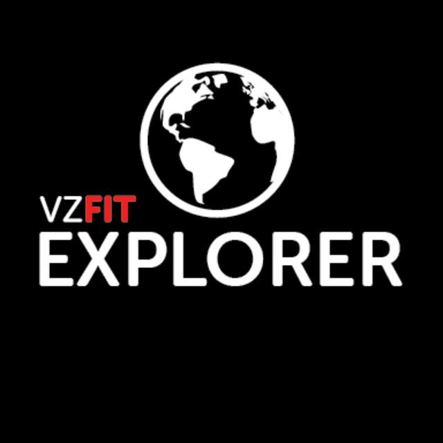 VZfit Explorer
