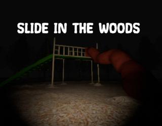 Slide In The Woods