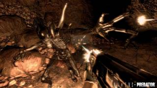 Aliens vs. Predator was banned by the OFLC until Sega appealed the action.