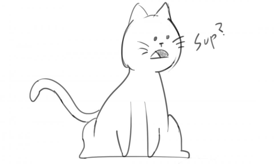 Derp the Cat