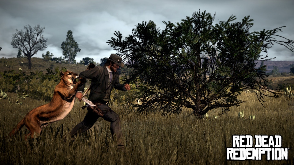 Animals add an great threat to Marston and hunting them will garner great rewards.