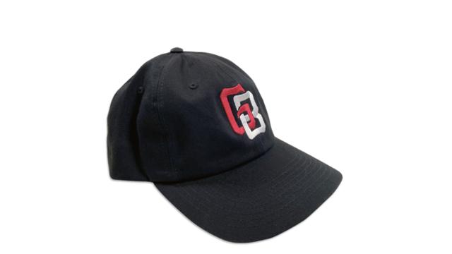 Interlocking Dad Hat