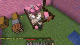 Let's Minecraft Together (Jan's View) 06/19/20