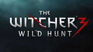The Witcher 3: The Wild Hunt is Really, Really Big