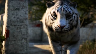 Far Cry 4's Story Even Has a Trailer Now