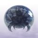 Avatar image for cosmokramer