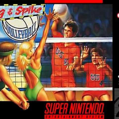 Dig & Spike Volleyball Super Nintendo/ ROM