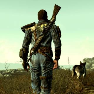 Dogmeat and the protagonist, taking a walk in The Wasteland.