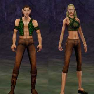 Wood Elves (New)