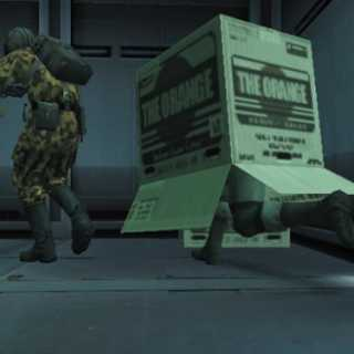 Cardboard Box, as seen in Metal Gear Solid 2.