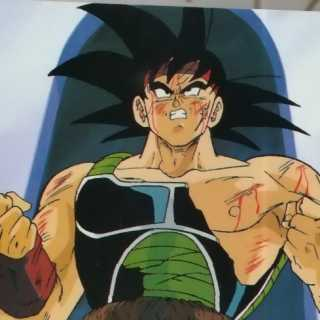 Bardock after a tough fight