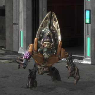 Grunt Minor from Halo: Reach