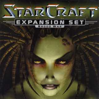 The cover of Starcraft: Brood War