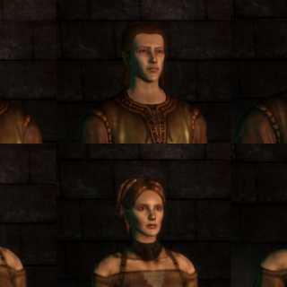 The Warden - Male Female Human Elf Dwarf Dragon Age Origins